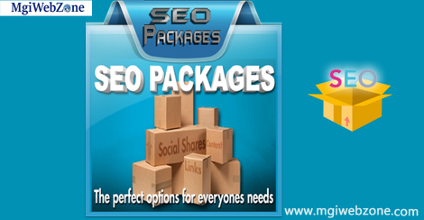 Best SEO Packages Delhi India