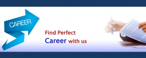 Perfect Career in SEO with MgiWebzone