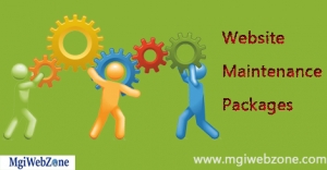 Website Maintenance Packages Delhi NCR India