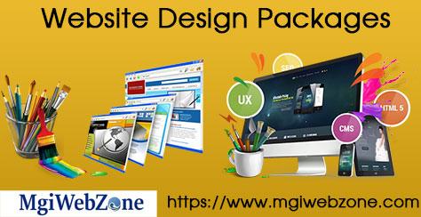 Website Design Packages Delhi India