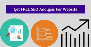 free seo analysis for Website