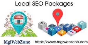 Local SEO Packages Delhi India