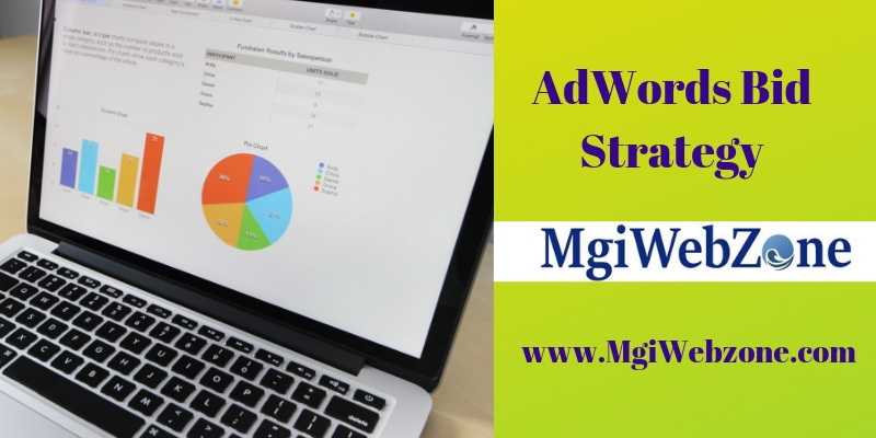 AdWords Bid Strategy in display network campaigns